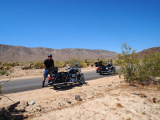 Motorcyclist and Harley Davidson Road King in Joshua Tree National Park
