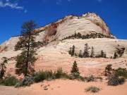 Bryce Canyon bjerg med få træer