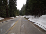 Sequoia National park with snow on the motorcycle road