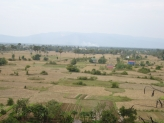 Fields in Cambodia