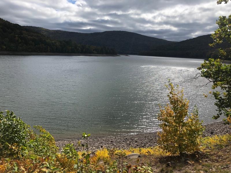 Tour Catskills Reservoir Dogs image