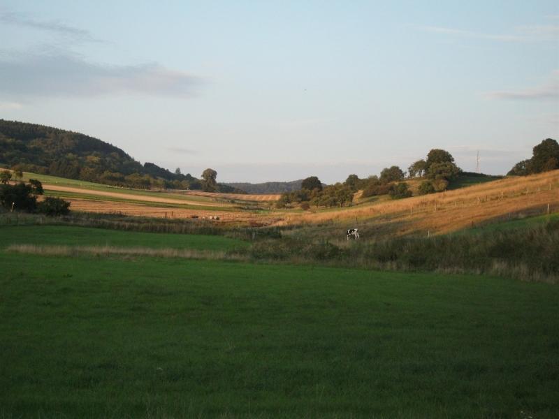 Tour 318 km Weserbergland image
