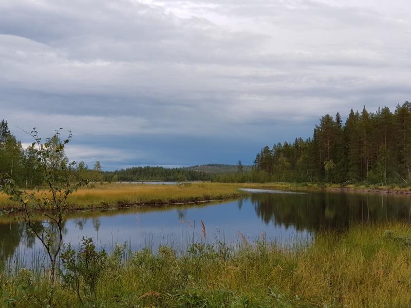Tour Björnavägen - Sörstrand - Gafsele - Björnavägen image