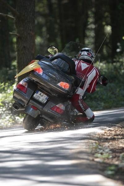 Tour Wildwood Ocala run image