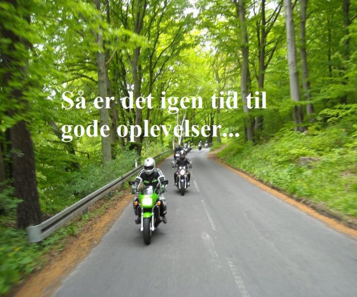 Tour Køge StevnsFyr Rødvig 1 image