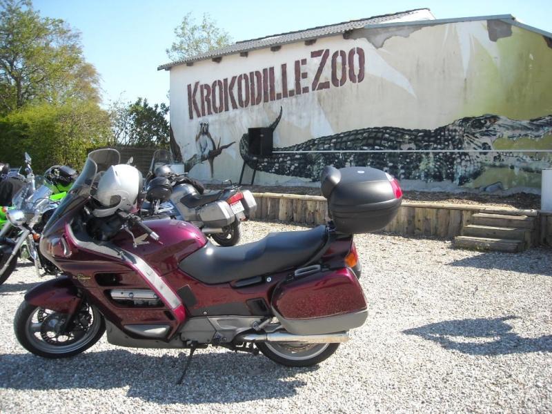 Tour Sydsjælland Køge til Krokodille Zoo image