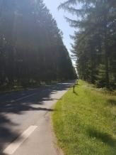 Tour Odense-Gøttingen-landevej image