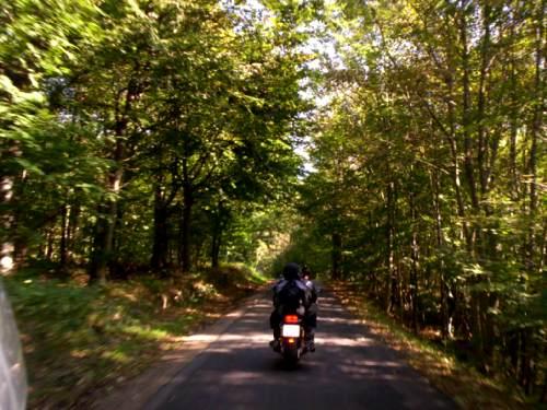 Tour TankEsromSkovgrill image